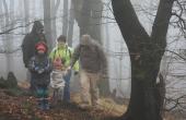 Stratení v hmle